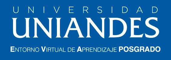 E.V.A. UNIANDES Posgrado